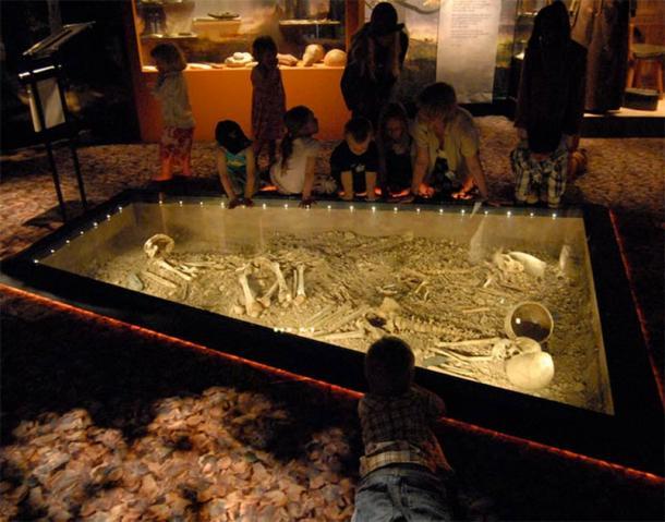 La découverte de Bergsgraven en 1953, lors de la construction d'une route à Linköping, en Suède, comprenait la tombe de ce qui était probablement une famille entière, comprenant un homme, une femme, un enfant et un chien, et des objets tels que des haches de combat. Cette découverte est actuellement exposée au musée d'Östergötlands. (Musée d'Östergötlands)