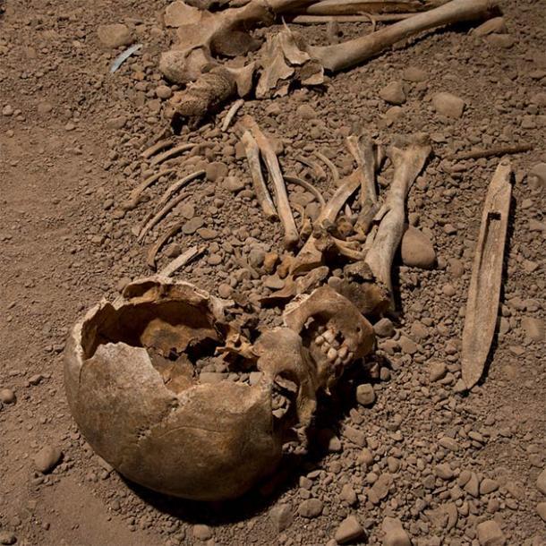 Les chercheurs ont utilisé l'ADN génomique extrait des restes du squelette d'un individu mâle associé à la culture néolithique des haches de combat pour essayer de comprendre l'ascendance génomique de la culture scandinave et sa relation avec la culture plus large des Corded Ware. (Jonas Karlsson / Östergötlands Museum)