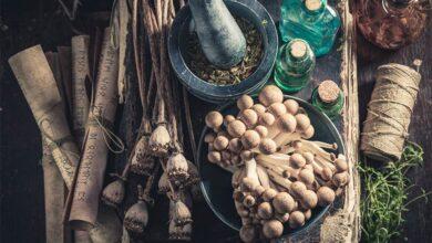 Photo de Un remède médiéval pourrait traiter les infections résistantes aux antibiotiques
