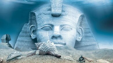 Top 15 interesting facts about ancient Egypt.            Source: Maurizio / Adobe stock
