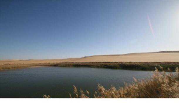 L'oasis de Siwa à l'époque moderne. (sulaiman / Adobe stock)
