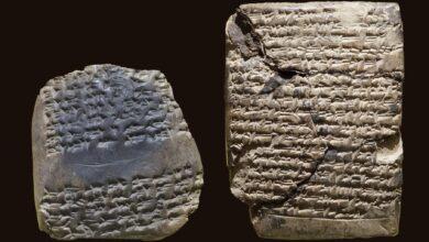 Photo de Des tablettes cunéiformes controversées racontent l'histoire des chiens de sécurité et d'une ville perdue