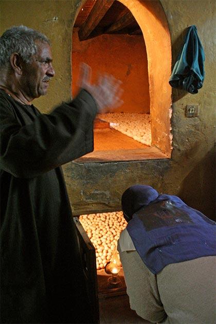 Deux rangées sont toujours la norme pour les fours à œufs égyptiens avec une petite entrée. (Lenny Hoferwerf / Avec l'aimable autorisation de l'Organisation des Nations unies pour l'alimentation et l'agriculture (2006) / Reproduit avec permission)