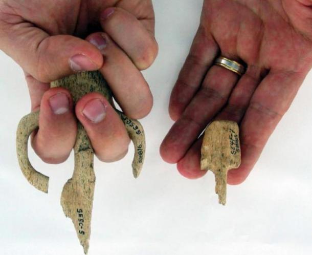 Les poignées Atlatl récupérées sur le Par-Tee, mettant en évidence la différence de taille entre certains des objets. (Losey et al.)