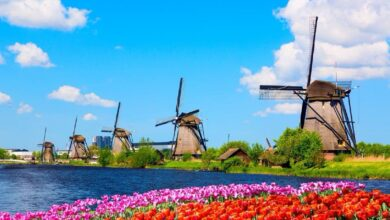 The Kinderdijk Windmills and surrounding waterways during spring, The Netherlands Source:  Nikolay N. Antonov / Adobe Stock