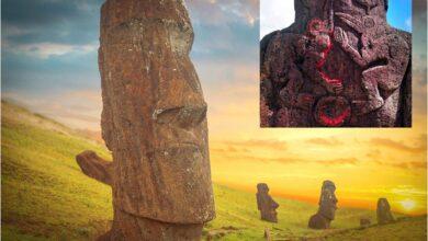 Main: Group of Moai monoliths during sunset on Easter Island. Inset: Birdman cult carvings on the back of standing Moai.       Source: Aliaksei & thakala / Adobe stock