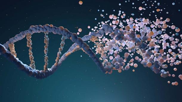 Assemblage de brins d'ADN à partir de différents éléments. (Tatiana Shepeleva / Adobe)