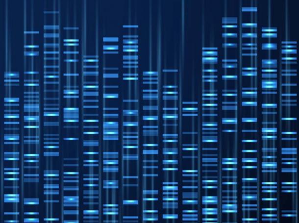 Visualisation des données génomiques. Séquence du génome de l'ADN, carte génétique médicale. (MicroOne / Adobe)