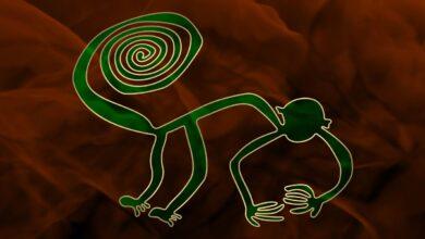 Representation of the monkey geoglyph, Nazca lines, Peru.