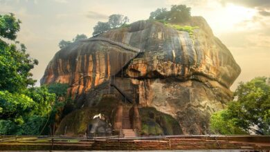 Bird flying over Sigiriya / Lion Rock in Sri Lanka.         Source: Givaga / Adobe stock