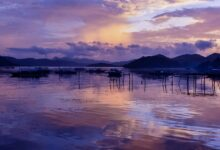 The coast of the Visayas islands, Philippines, today.               Source: attiarndt / Adobe Stock