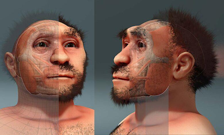 Forensic facial reconstruction of Homo erectus