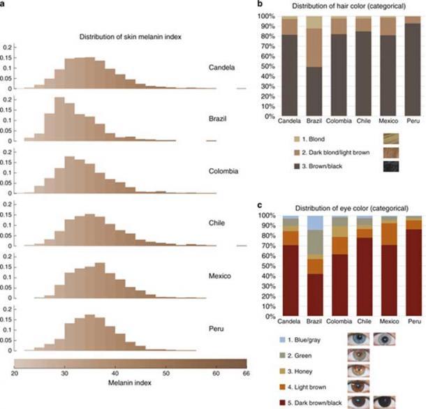 Échantillon de l'étude montrant une partie de la cohorte CANDELA établie dans cinq pays d'Amérique latine. (Nature Communications / UCL)