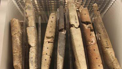 Sumerian tablets, Sumerian script is known as cuneiform. Source: Pixabay/ CC0