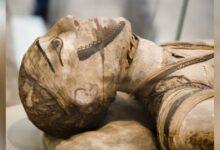 Egyptian mummy. Credit: markrhhiggins / Adobe Stock