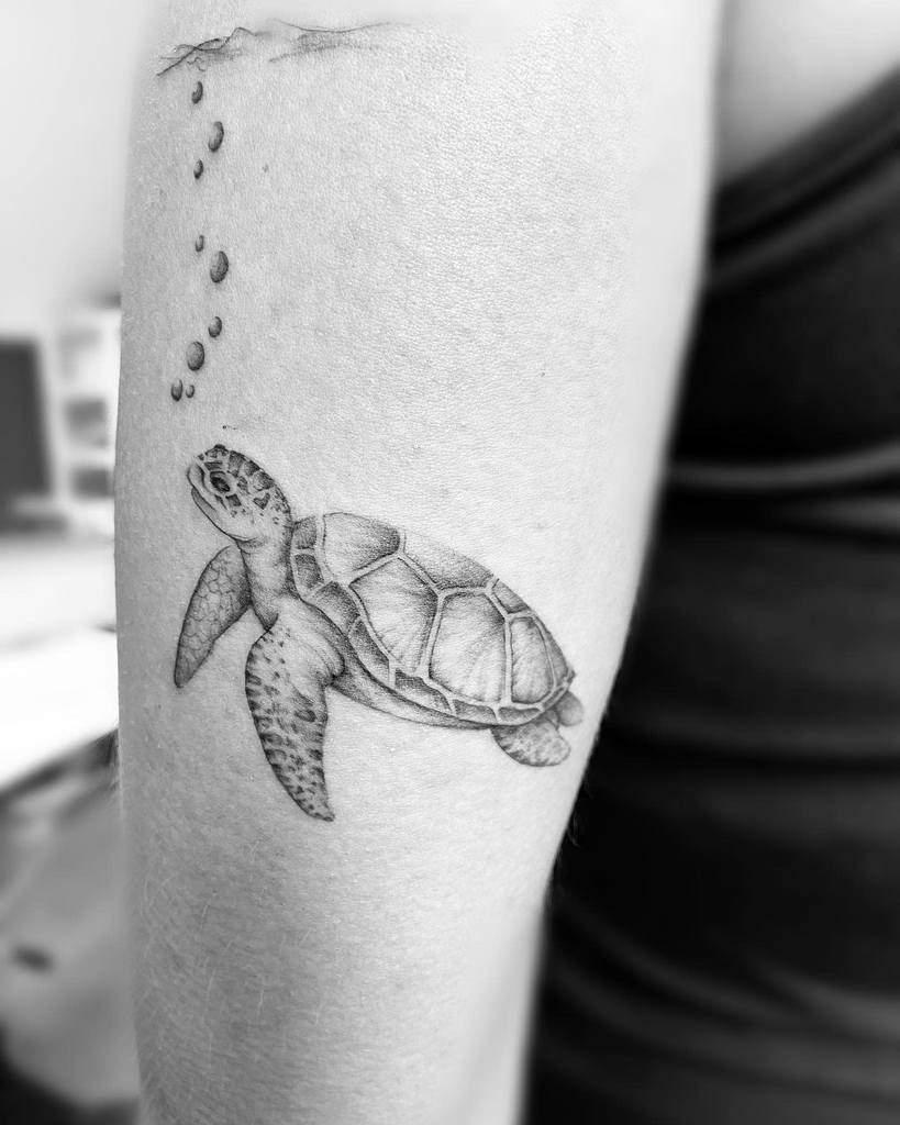 Tatouages de petites tortues noires stbarthink