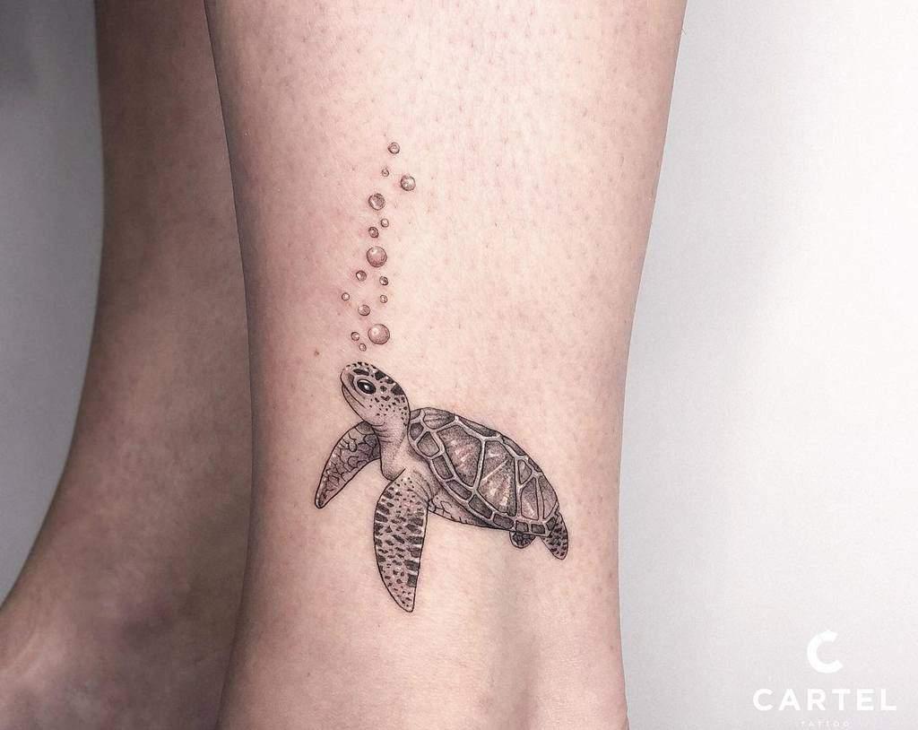 Petits tatouages de cheville de tortue cartelkyiv