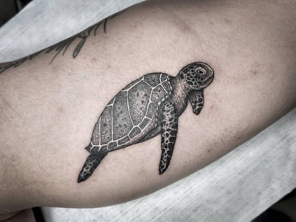 Tatouages réalistes de petites tortues bijoutattoos