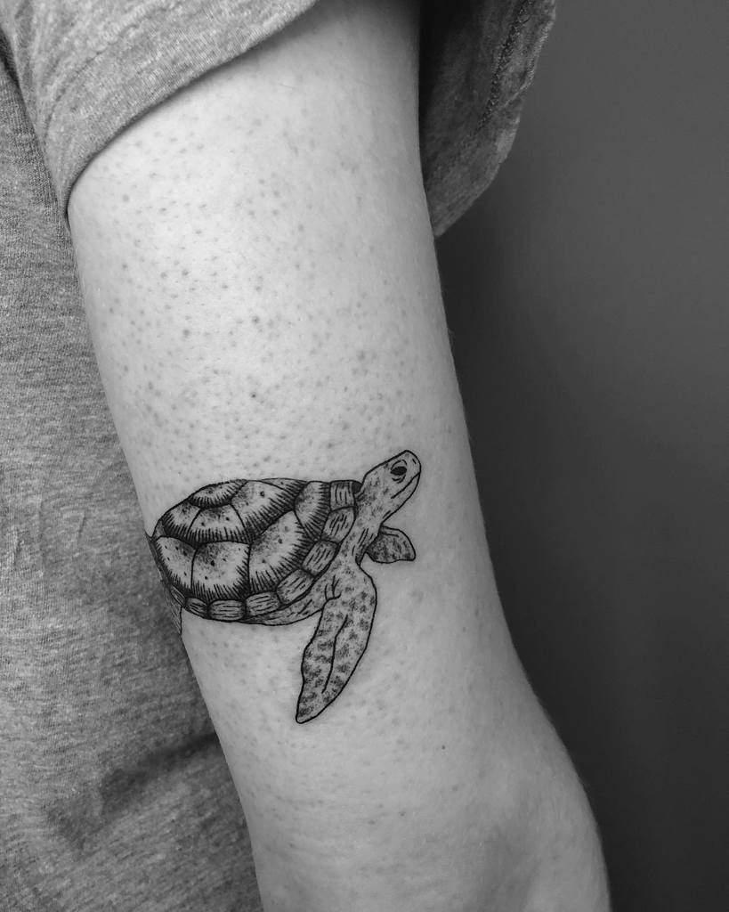 Tatouages de petites tortues sur les bras d'une biche.encre
