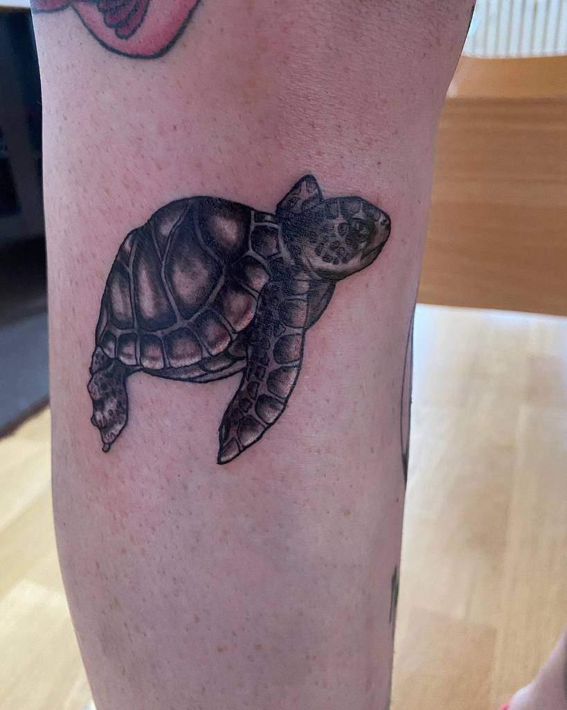 Tatouages de petites tortues noires new_tattoo_artist