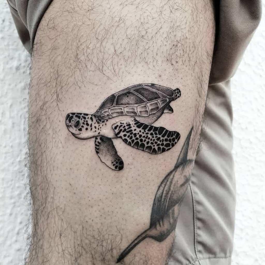 Tatouages de petites tortues noires ilch.dich