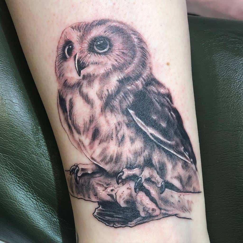 Petits tatouages réalistes de chouettes en solo