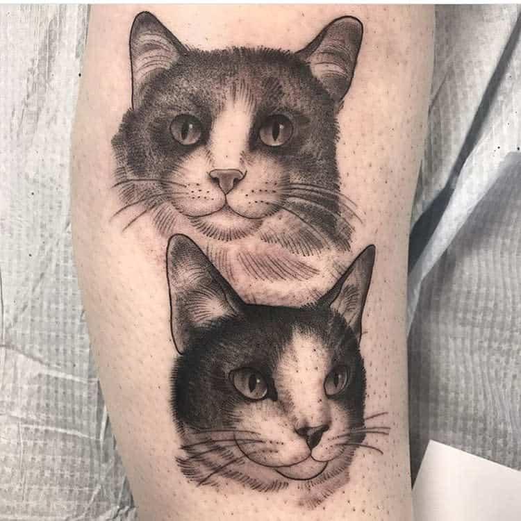 Tatouages réalistes de petits chats beefy.and.hammy