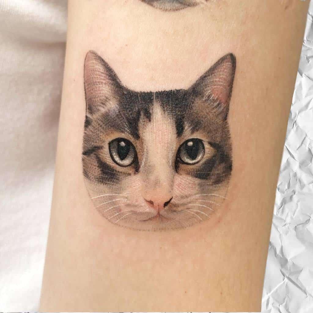 Tatouages réalistes de petits chats 2 tappymao