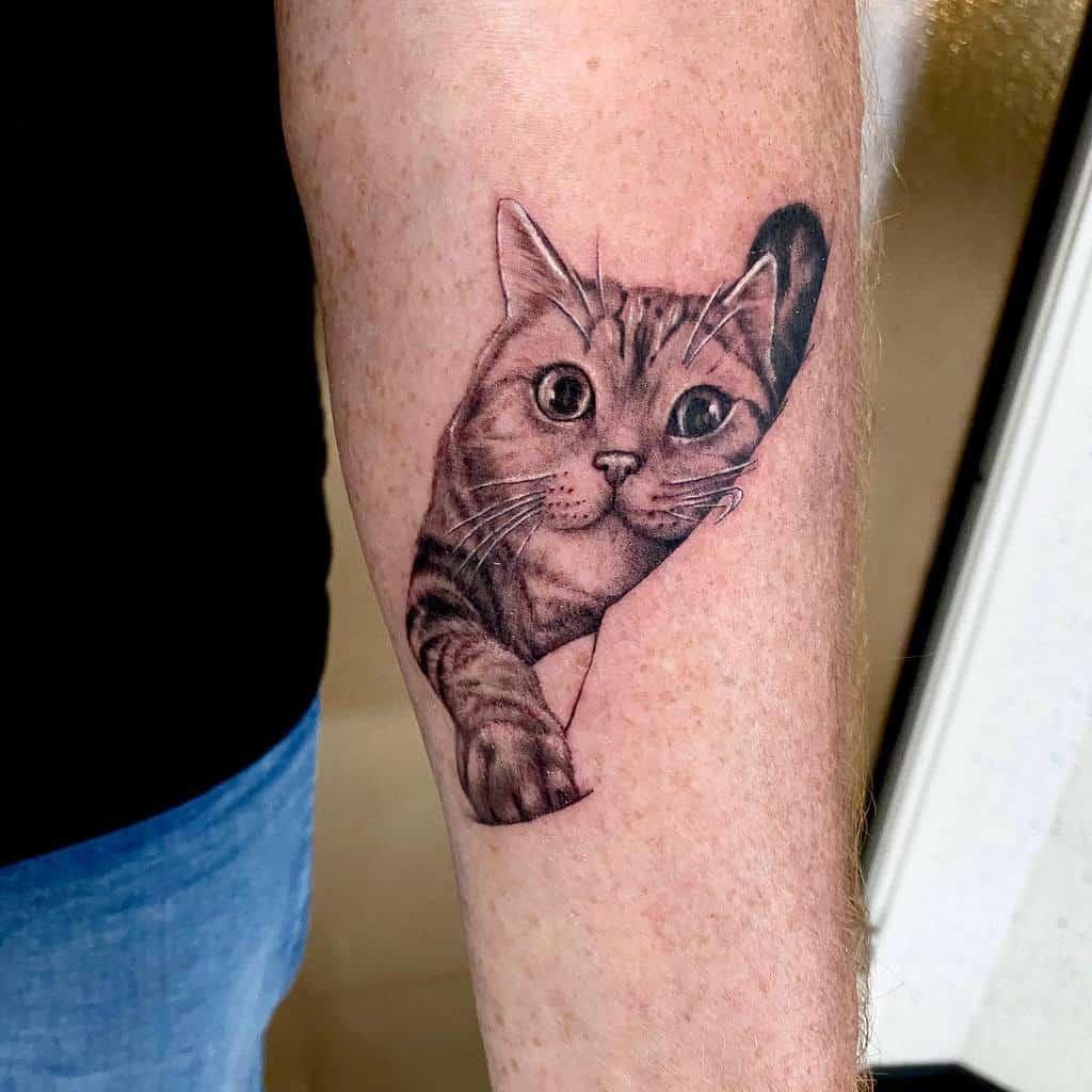 Tatouages d'avant-bras de petits chats prestigetattoo94