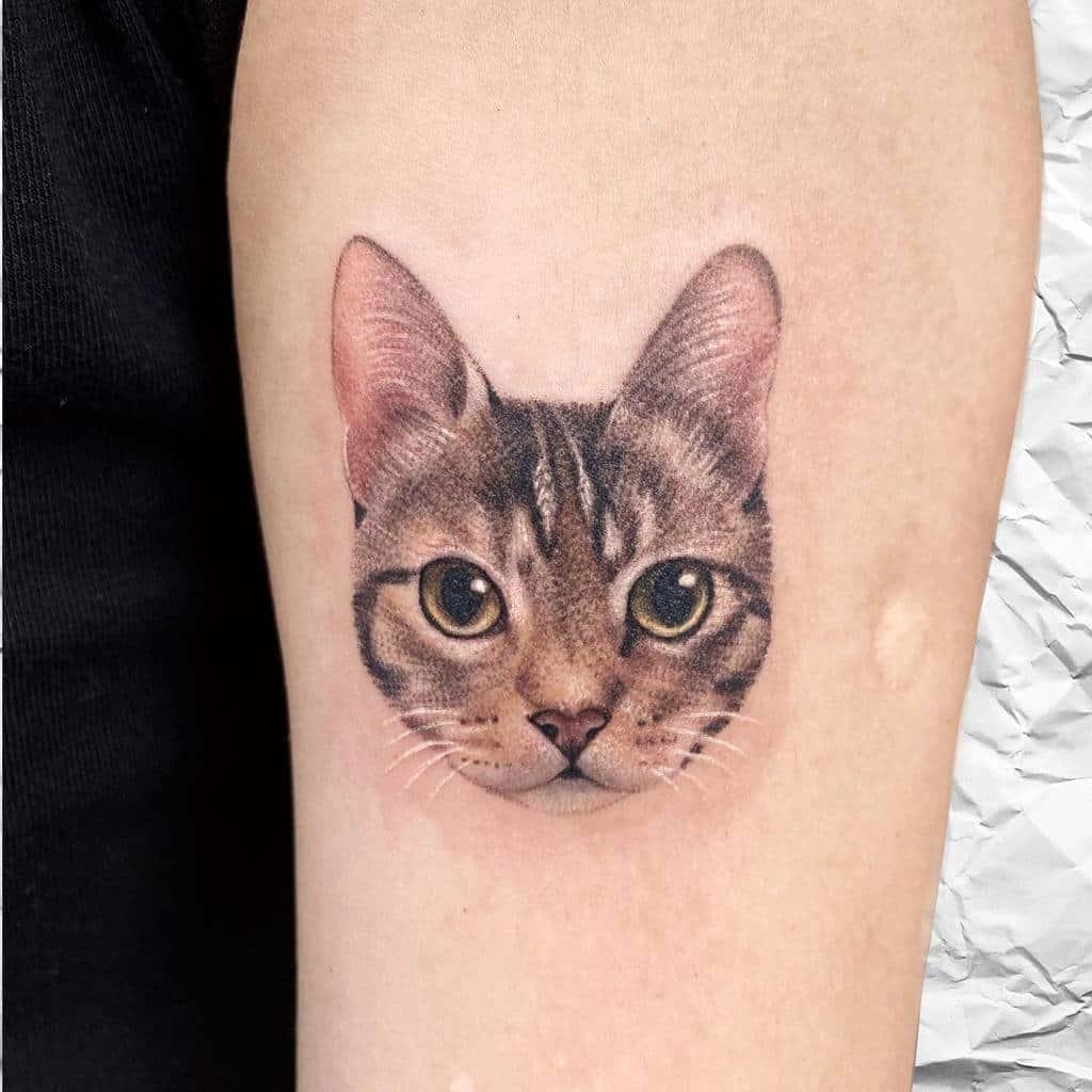 Tatouages réalistes de petits chats 3 tappymao