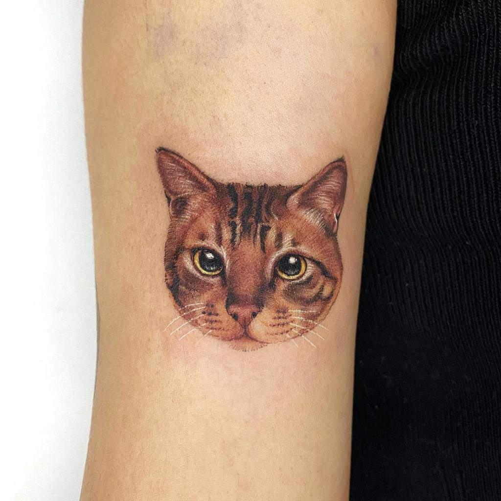 Tatouages réalistes de petits chats tappymao