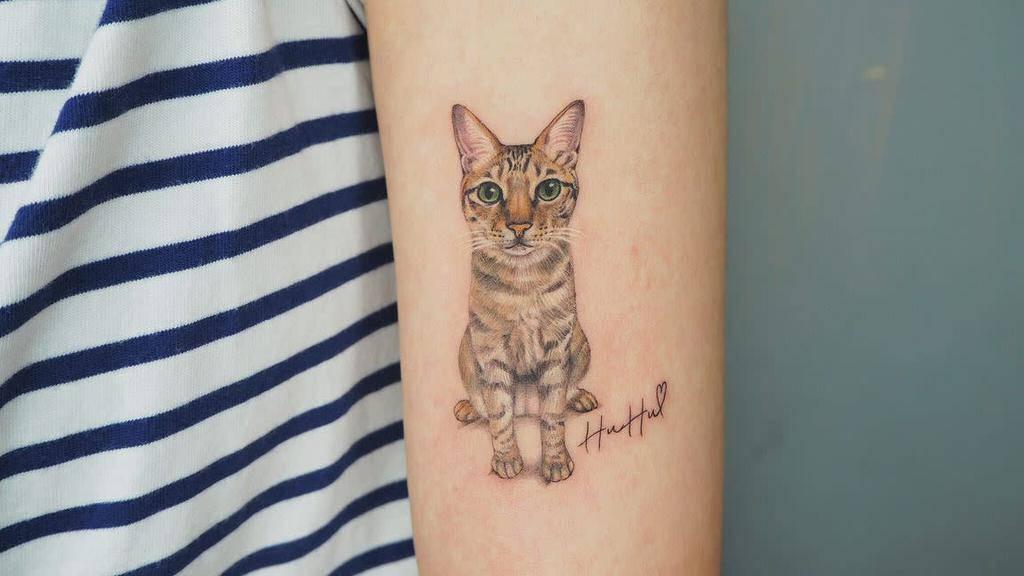 Tatouages réalistes de petits chats meilu_928