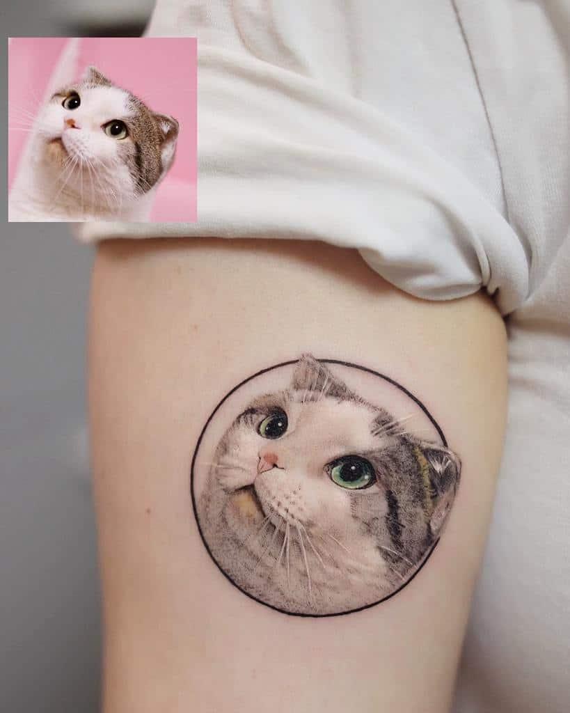 Tatouages réalistes de petits chats fattie_tao