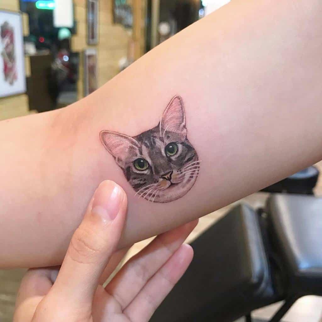 Tatouages de petits chats sur les bras 2 meilu_928