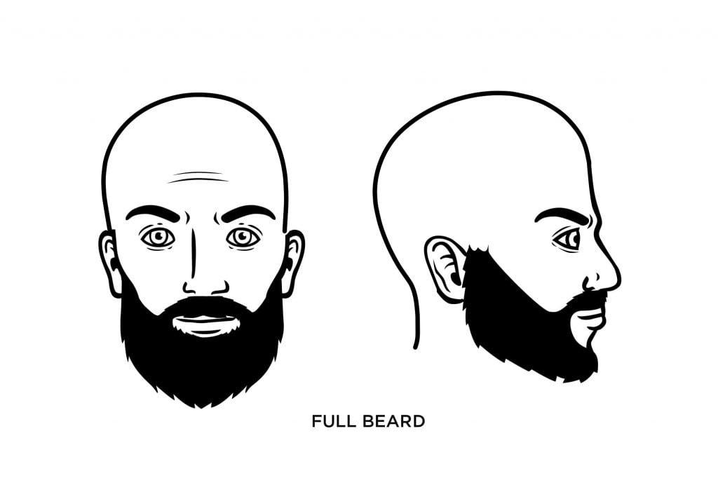 homme chauve, barbe pleine