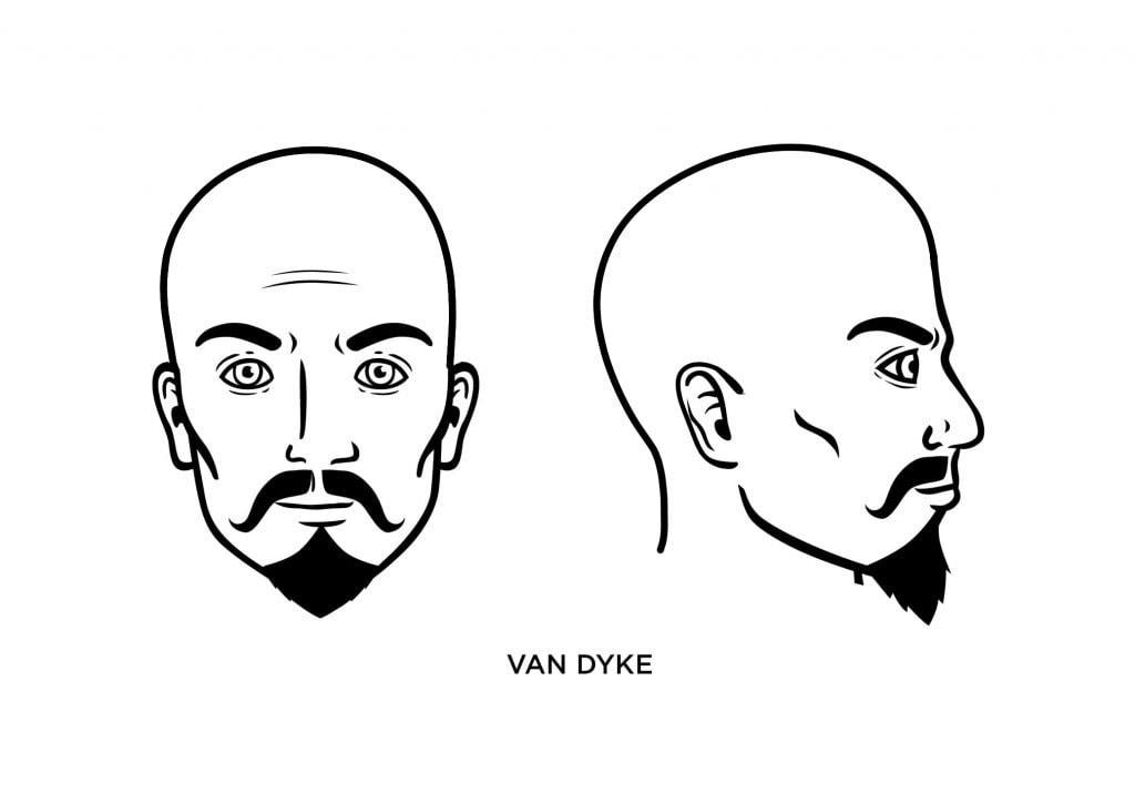 homme chauve avec une barbe de gouine