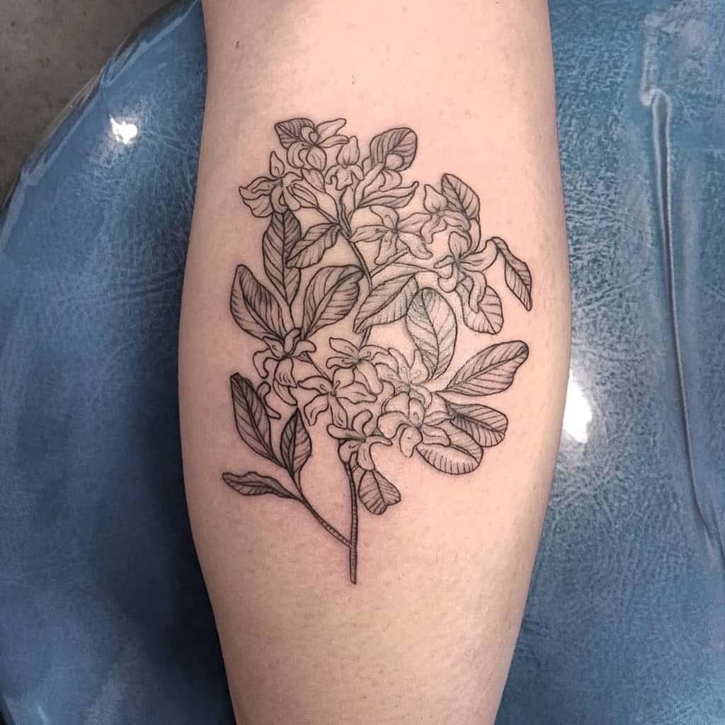 Tatouages de fleurs de jasmin Blackwork Carrie.tattoo