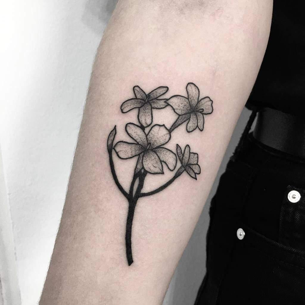 Tatouages de fleurs de jasmin en points Monika Frks