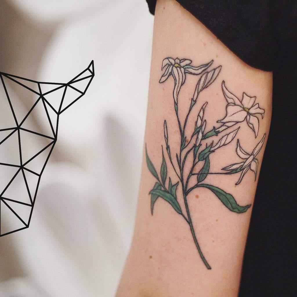 Tatouages de fleurs de jasmin à l'aquarelle Toroverde Torino
