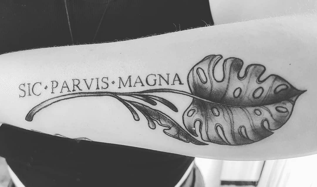Tatouages de l'avant-bras Sic Parvis Magna Cherrybodt