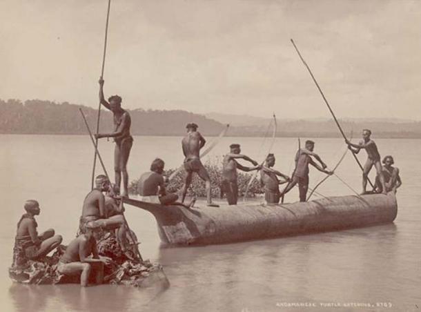 Groupe d'hommes et de femmes andaman en costume, certains portant de la peinture corporelle et munis d'arcs et de flèches, attrapant des tortues depuis un bateau sur l'eau. (Domaine public)