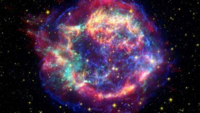 Abondance des éléments de l'univers