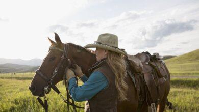 Apprendre à monter à cheval à un âge plus avancé