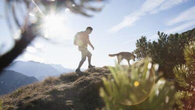 Combien de calories supplémentaires brûlez-vous en marchant dans les collines ?