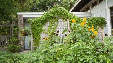 Comment construire un treillis de jardin