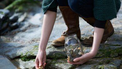 Comment devenir un collectionneur de pierres