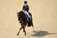 Comment entraîner votre cheval à faire une passe latérale ou complète