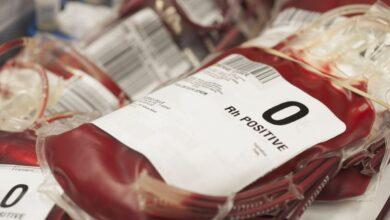 En savoir plus sur le groupe sanguin