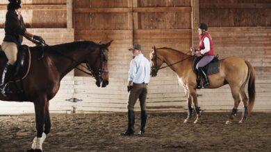 Entraîner votre cheval fort pour avoir le contrôle