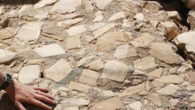 Géologie et utilisation des roches brèches